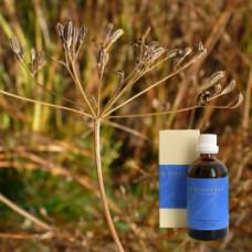 Тмин в оливковом масле Carum carvi aeth. 5 % in Olivenl, 100 ml
