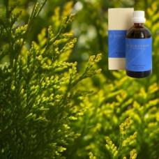 Кипарис в оливковом масле Demeter Cupressus semp. aeth. 5 % in Olivenl, 100 ml