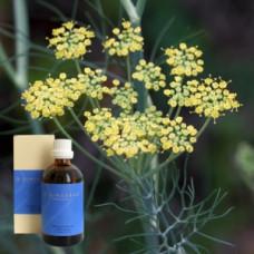 Фенхель 10% в оливковом масле Foeniculum aeth. 10 % in Olivenl, 100 ml