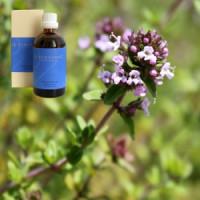 Тимьян лимонный в оливковом масле Demeter Thymus linalol aeth. 5 % in Olivenl, 100 ml