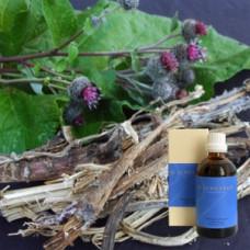 Лопух 5% в оливковом масле Lappa e rad. 5 % in Olivenl, 100 ml