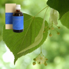 Масло Липа 5% в оливковом масле Tiliae flos. ex herba 5 % in Olivenl, 100 ml