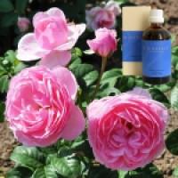 Торф, роза в оливковом масле Peat-Rosa e flor. leum, 100 ml