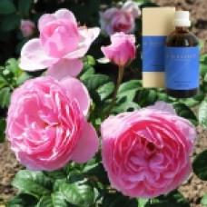 Масло Торф, роза в оливковом масле Peat-Rosa e flor. leum