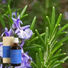 Розмарин в оливковом масле Demeter Rosmarinus offic. 10 % in Olivenl, 100 ml