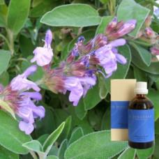 Шавлія 10% в оливковій олії Demeter Salvia offic. aeth. 10% in Olivenl, 100 ml