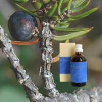 Можжевельник в оливковом масле Demeter, 100 ml
