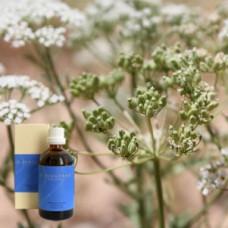 Анис 5% в оливковом масле Anisum aeth. 5 % in Olivenl, 100 ml