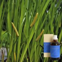 Масло JUNGEBADАир обыкновенный 5% в оливковом масле 100мл