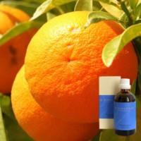 Апельсин 5 % в оливковом  маслеDemeter Citrus aurantium aeth. 5 % in Olivenl, 100 ml